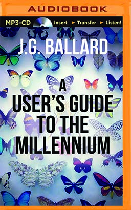 User's Guide to the Millennium, A