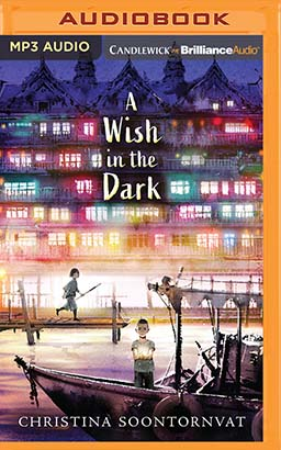 Wish in the Dark, A