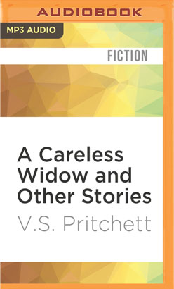 Careless Widow and Other Stories, A