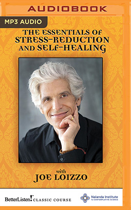 Essentials of Stress-Reduction and Self-Healing, The