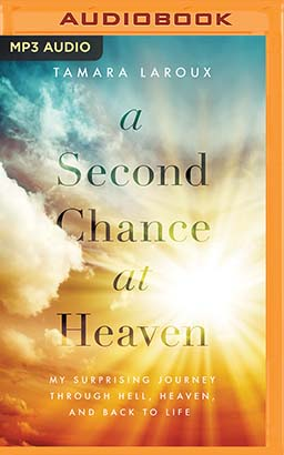 Second Chance at Heaven, A