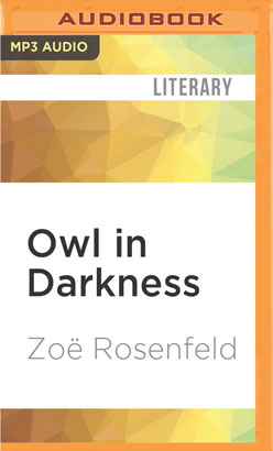 Owl in Darkness