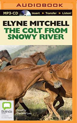 Colt from Snowy River, The