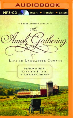 Amish Gathering, An