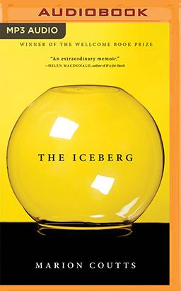 Iceberg, The