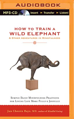 How to Train a Wild Elephant & Other Adventures in Mindfulness