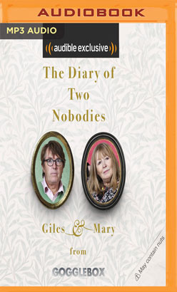 Diary of Two Nobodies, The