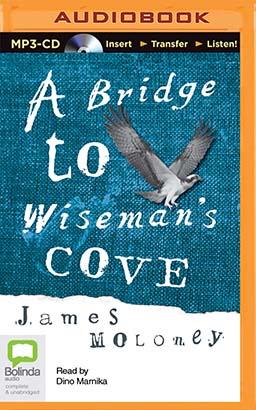 Bridge to Wiseman's Cove, A