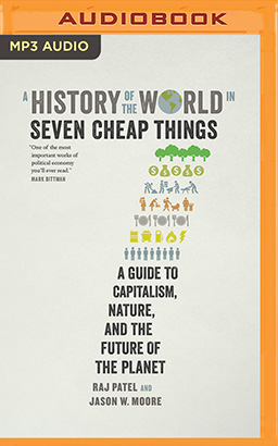 History of the World in Seven Cheap Things, A